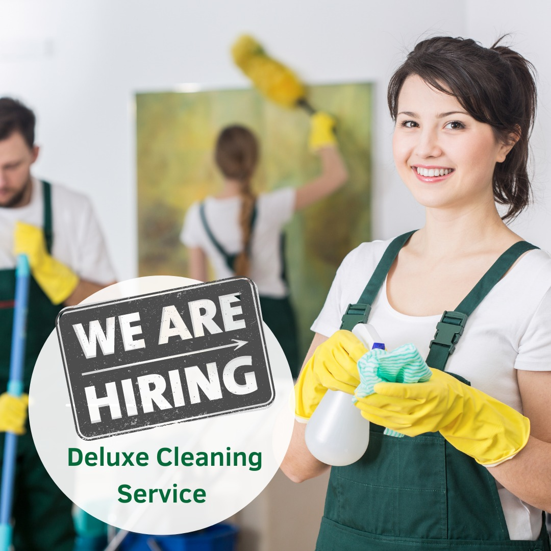 Deluxe cleaning London, Careers